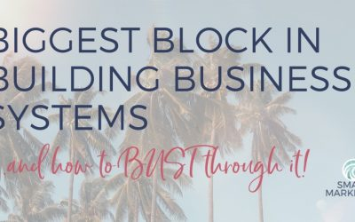 Biggest Block in Building Business Systems…and how to bust through it