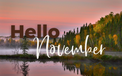 Monthly Marketing Ideas: November 2020 Holidays